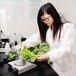 SAG农产品检测深圳蘑菇食品检测食用菌农残检测