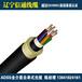ADSS电力光缆4芯6芯8芯12芯24芯48芯96芯。跨距100/300/500米