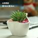 花瓷阁陶瓷多肉植物小花盆花器纯白简约迷你工艺盆栽批发