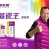 绍兴新昌县地老板美缝剂加盟代理绣瓷真瓷胶施工方法培训