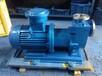 ZCQ50-40-160普通/防爆型不锈钢自吸磁力泵生产厂家耐酸碱自吸磁力泵批发供应