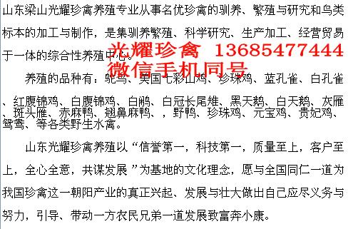 甘肃省定西市临洮县孔雀的圈舍建设好养吗