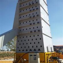 大型塔式粮食烘干机100吨小麦玉米烘干机图片