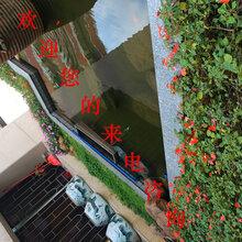 广州天河别墅花园庭院、广州天河私家庭院景观设计