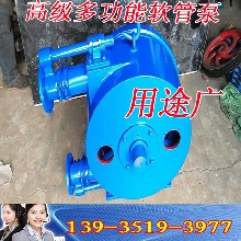 陕西工业软管蠕动泵32-100型工业软管泵