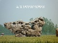 批发灵璧白灵石园林石刻字石承接假山设计与施工图片