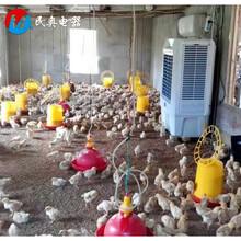 小鸡场降温用水冷空调湿帘冷风机图片