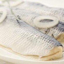 青岛进口海产品清关清关流程