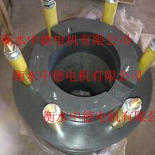生产销售电动机滑环YDKS5604欢迎致电衡水中德电机有限公司