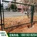 揭阳城市绿化带隔离网珠海道路金属防护网梅州农场围栏网