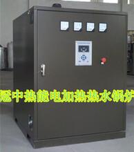 供应信阳洗浴锅炉常压电热水锅炉