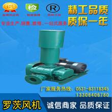 RSR-125型三叶罗茨鼓风机价格产品介绍图片