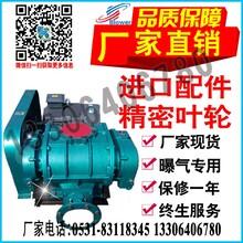 天然气沼气管道增压罗茨鼓风机产品山东厂家介绍图片