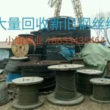 上海周边钢丝绳多少钱一吨图片