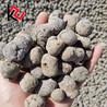 河南开封回填垫层陶粒,用于屋面保温,认准安徽孔氏陶粒