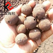 基础建筑材料提供保温材料建材陕西西安陶粒厂家直销图片