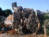 广东黄蜡石、清远黄蜡石、英德假山风景石