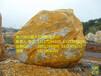 牡丹江绕了几个弯看见几个好看的黄蜡石假山石