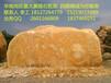 黄蜡石快速出手,景观石场有大量奇石假山