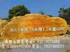 没选到好的黄蜡石,就来景观石场,大量假山石