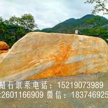 广东省广州优质黄蜡石、假山石