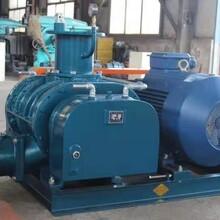 罗茨真空泵SZR100V图片