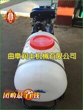汽油喷雾器远程喷雾器农用打药机喷雾打药机图片