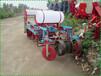 草坪花卉省钱播种机青毛豆汽油播种机单双粒种植机