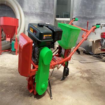 质保一年蔬菜播种机无漏种精密播种机施肥标准种植机