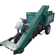 防治污染环境清粪车柴油3立方清粪车高效粪便清理车图片