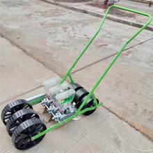 手推蔬菜多行精播机汽油动力定精播机耐用播种机厂家图片