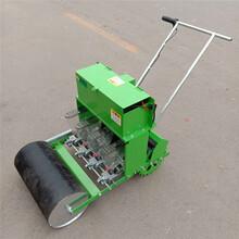 汽油行走播种机农用便捷精播机香菜油菜种植播种机图片