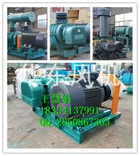 高负压真空泵罗茨式真空泵厂家直销(包装)