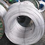 供应7/3.2钢丝钢绞线销售商家图片