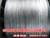 240/30求购钢芯铝绞线厂家直销