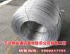 河北供应商家1.2mm热镀锌钢丝