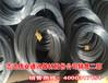 河北供应商家镀锌钢丝厂家