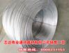 沧州供应商家60热镀锌钢绞线厂家