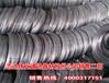 沧州供应厂家3.0mm镀锌钢丝厂家