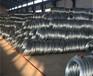 原廠直供包塑鍍鋅鋼絲