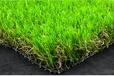 聊城哪类卖人造草坪?大森林人造草坪。