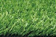 烟台人造草坪厂家,人造草坪价格。