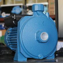压水泵正品意大利宾泰克水泵CM100全自动离心