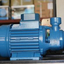 意大利宾泰克水泵PMT80冷水机泵机床泵机床高温油泵进口泵