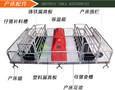 濮阳县母猪产床尺寸猪舍长期潮湿饲料搭配不当会造成什么后果图片