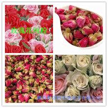 玫瑰花提取物玫瑰花粉玫瑰花纯粉