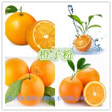 橙子粉橙子纯粉橙子浓缩汁粉