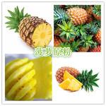 菠萝粉菠萝速溶粉菠萝果粉图片