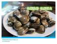 牡蛎肽牡蛎粉图片