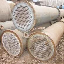 出售二手冷凝器5-1000平方二手不銹鋼材質冷凝器圖片